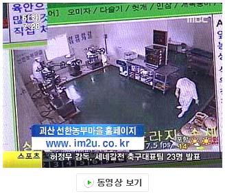 뉴스 동영상보기