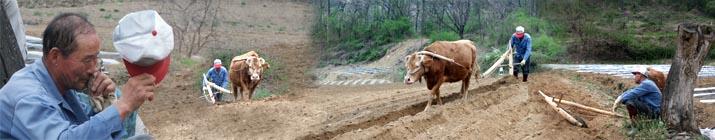 괴산군 농민들의 농산물 직거래 장터에 오신 것을 환영합니다.